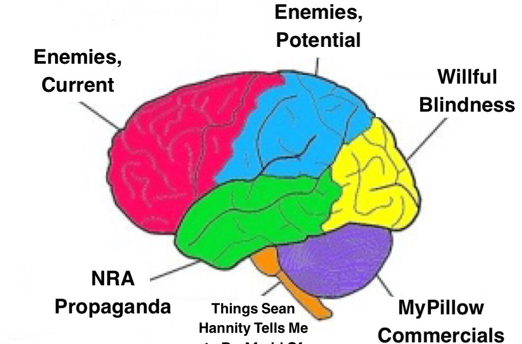 Dissecting the Conservative Brain During the Age of Coronavirus